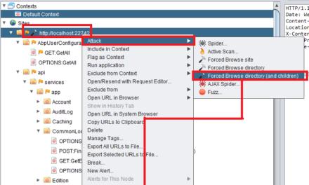 Penetrationtest + OWASP Zap: Python basiertes webspidern und baseline scanning